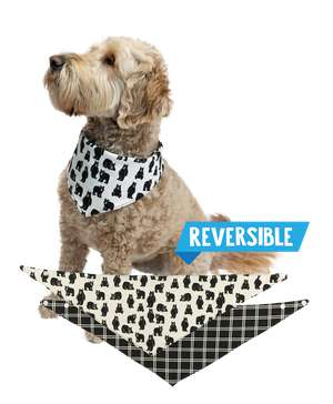 Family Bear Dog Bandana