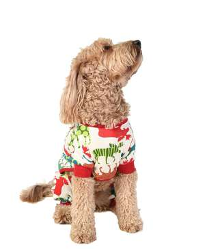 Pattern Moose Dog Onesie Flapjack