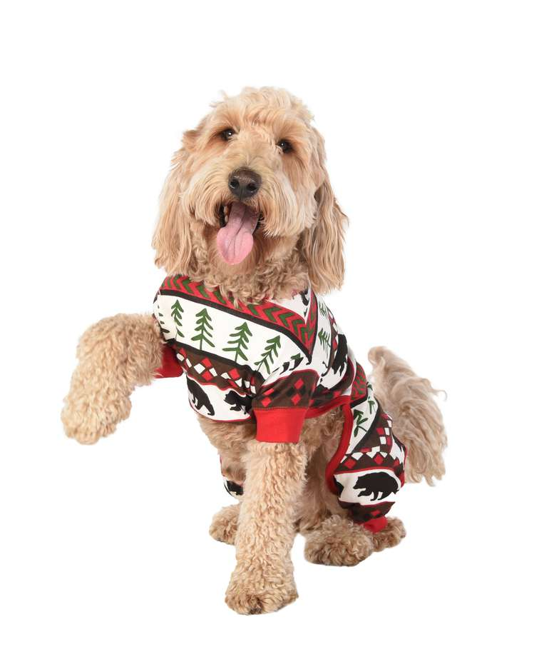 Bear Essentials Dog Onesie Flapjack