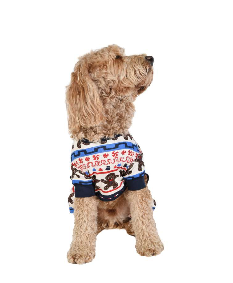 Sweet Cheeks Dog Onesie Flapjack