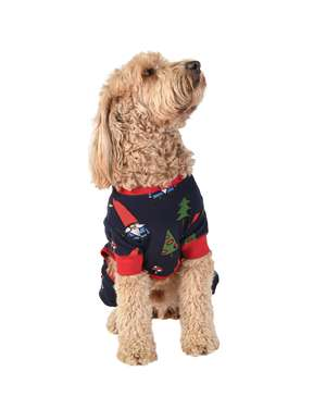 Gnome Dog Onesie Flapjack