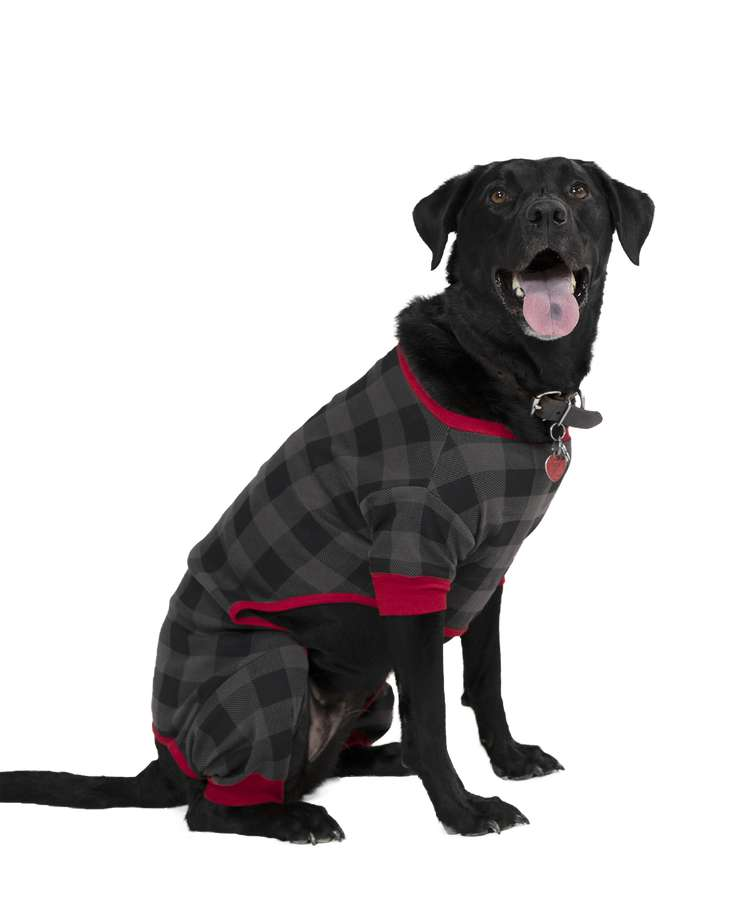 Grey Plaid Dog Onesie Flapjack