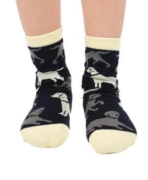 Lab Kid Sock