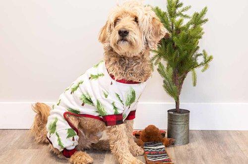 Dog Flapjack Pajamas
